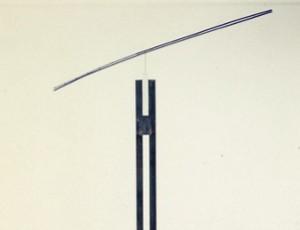 ホーキング ラン 1995